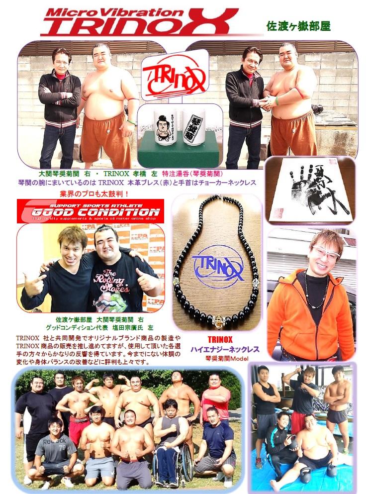 琴奨菊・トリノックス・グッドコンディション・トレーニング・サドガタケ部屋