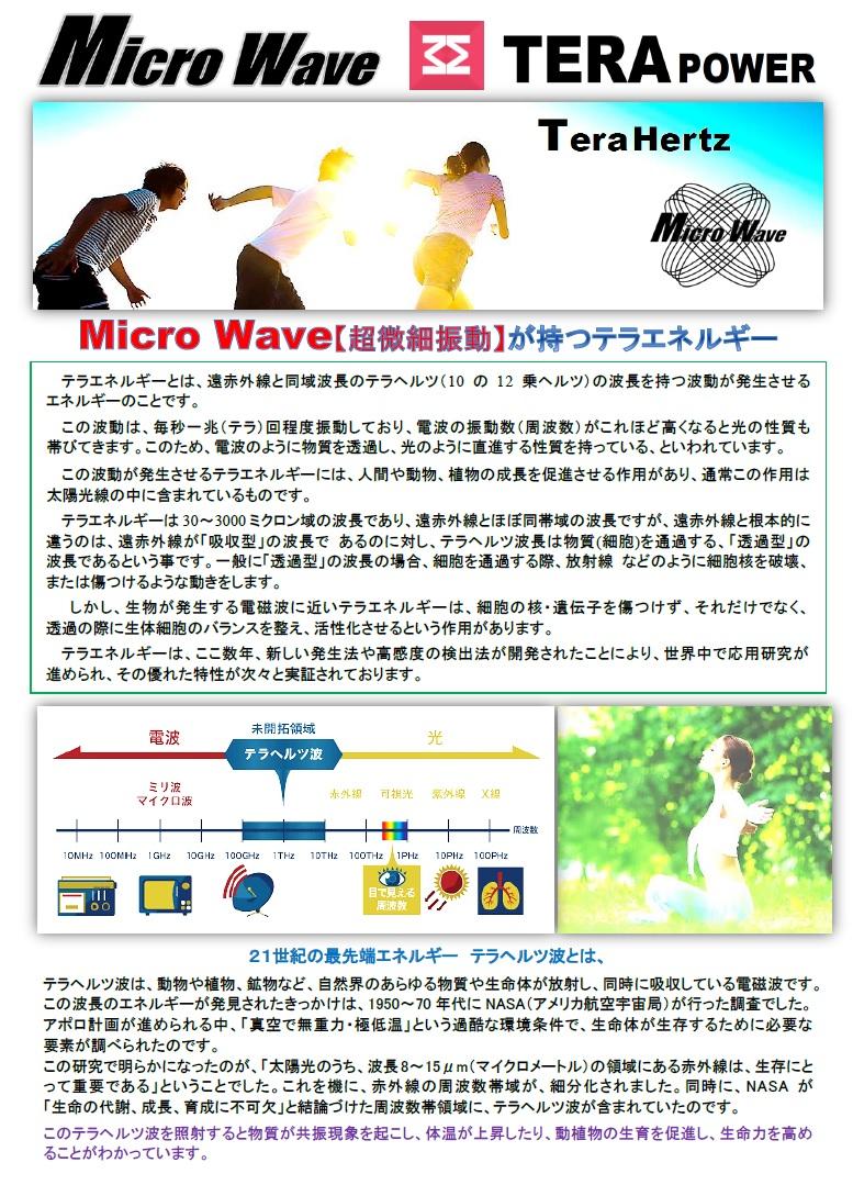 Micro Wave【超微細振動】が持つテラエネルギー