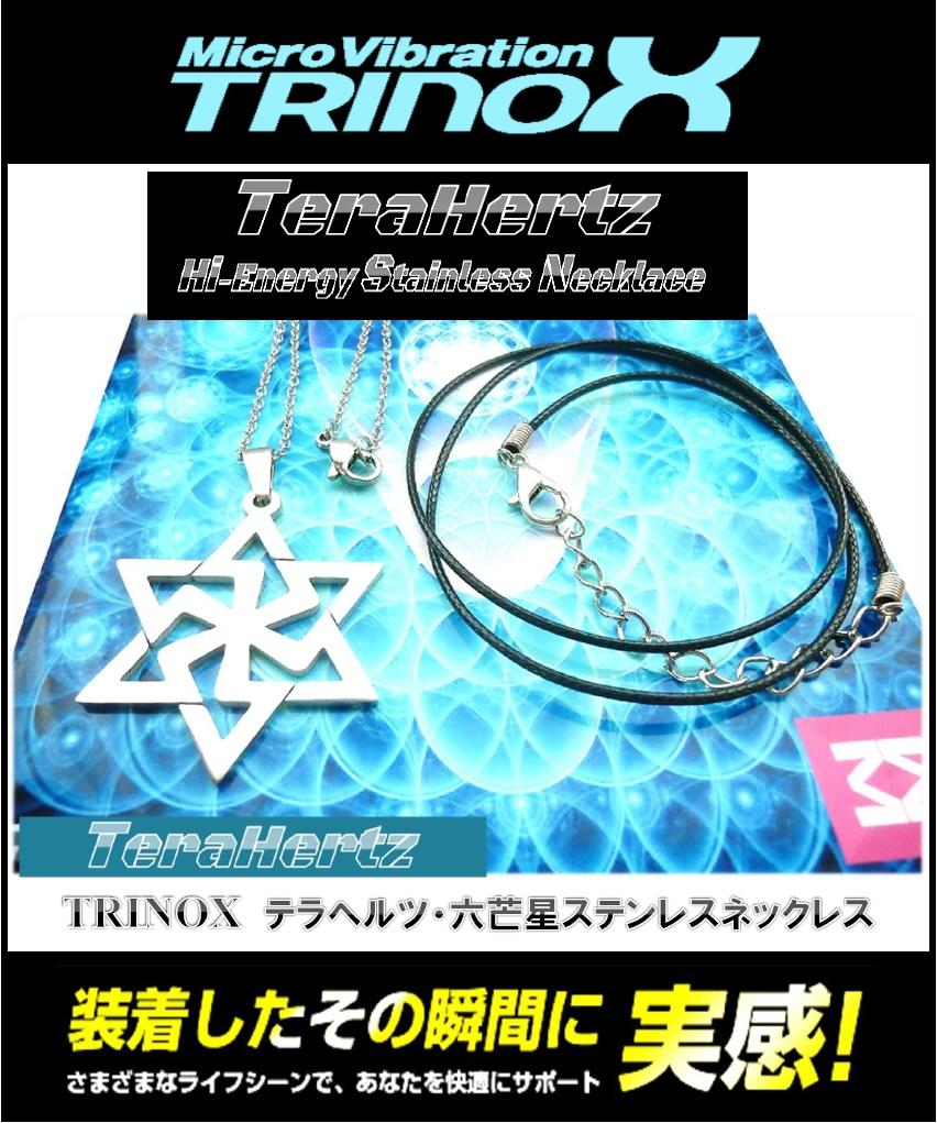 1 TRINOX テラヘルツ・六芒星ステンレスネックレス