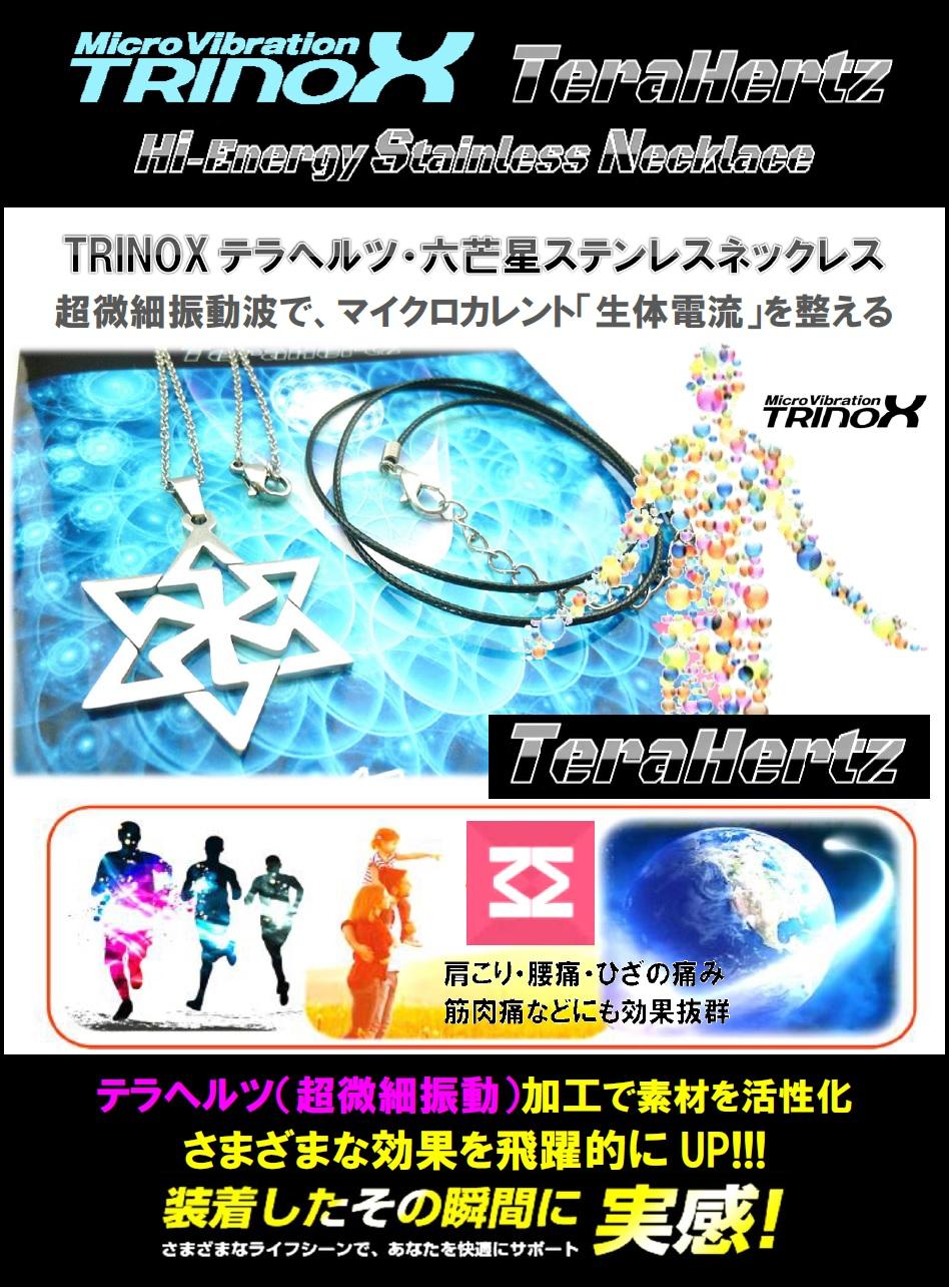 2 バナー TRINOX テラヘルツ・六芒星ステンレスネックレス