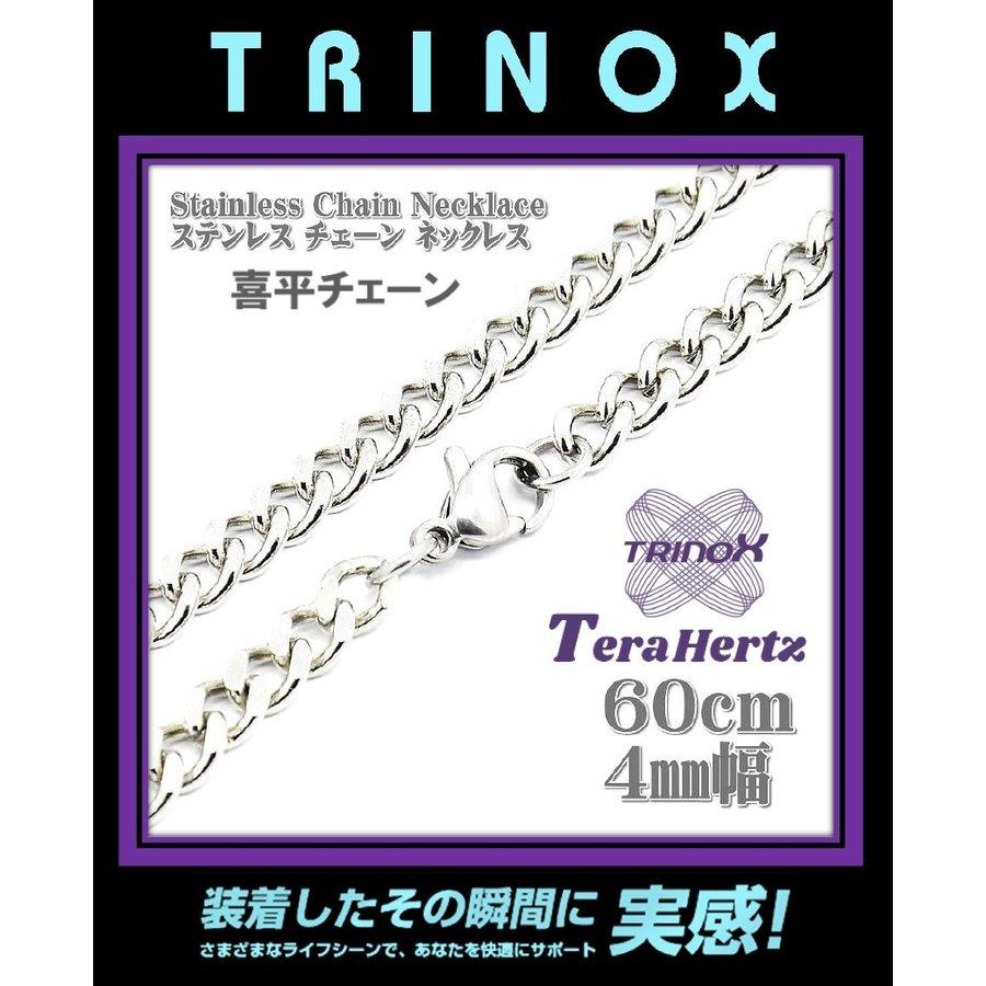 torinox-store_stainlessnecklace-kihei-4-60_2