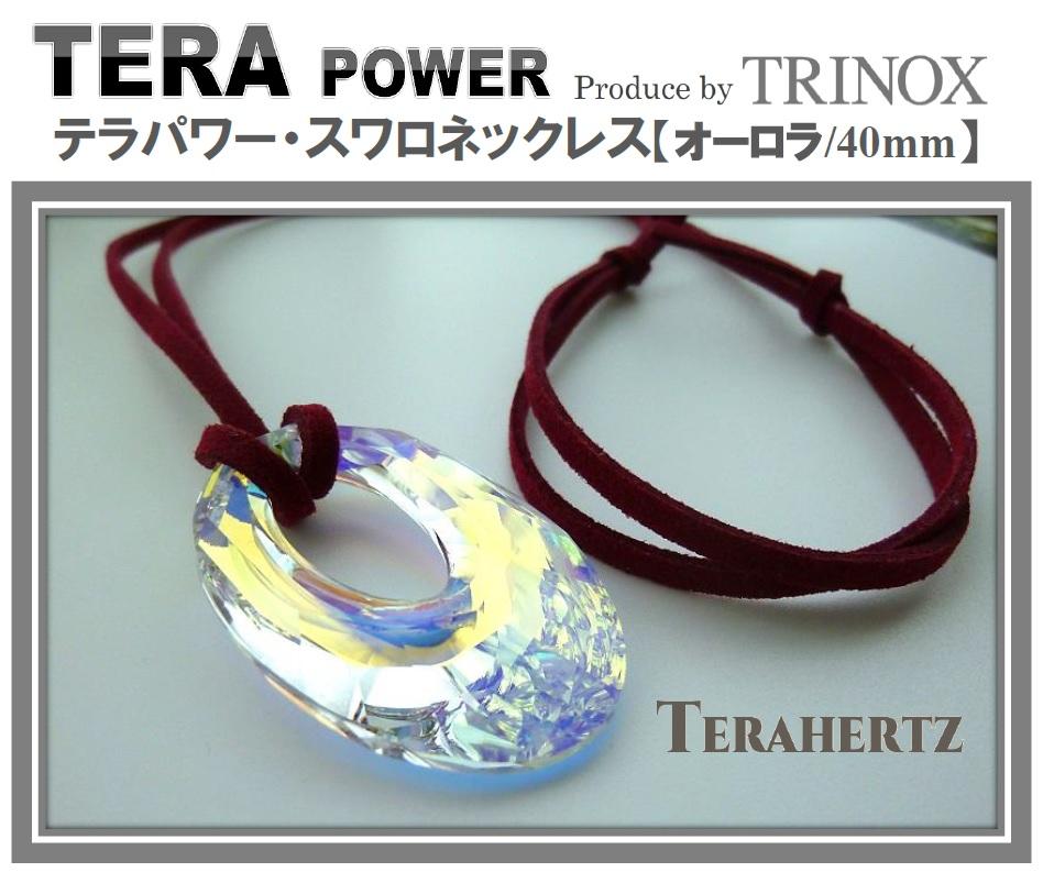 1 【オーロラ】 テラパワー スワロネックレス