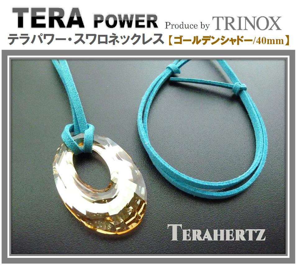1 【ゴールデンシャドー】 テラパワー スワロネックレス