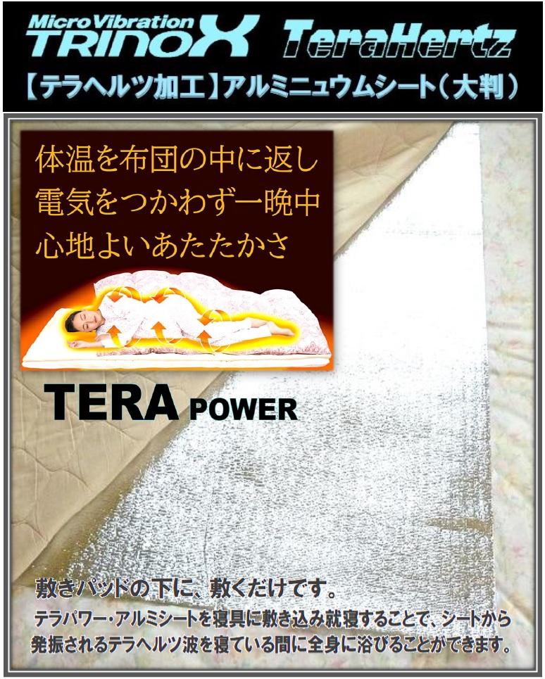 2 TRINOX テラパワー・アルミシート