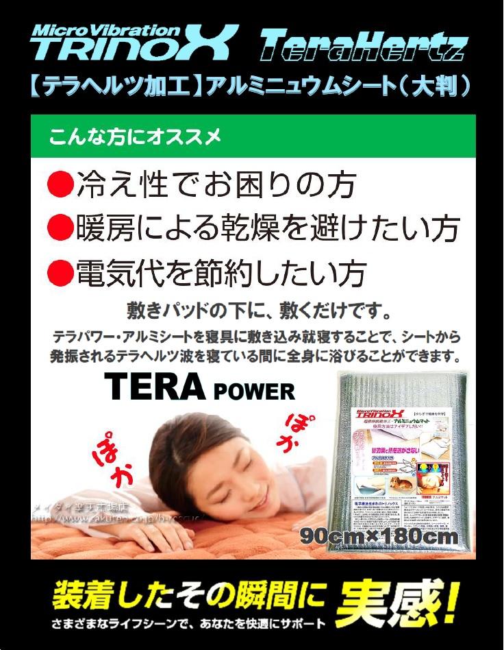 3 TRINOX テラパワー・アルミシート