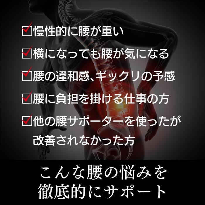 5 (腰)テラパワー・サポーター