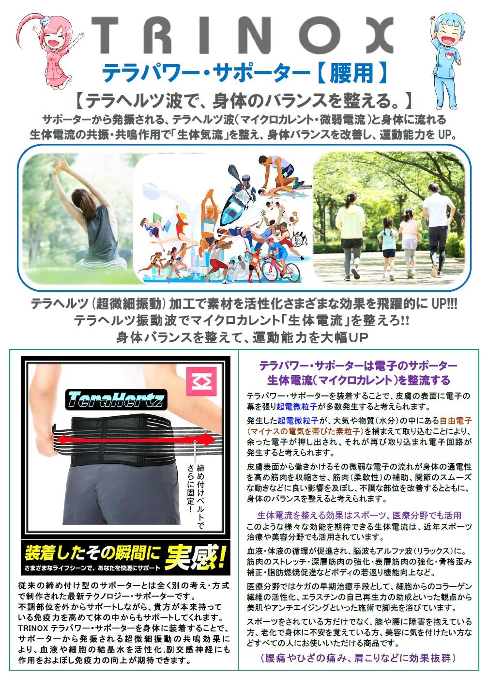 8 (腰) テラパワー・サポーター 解説